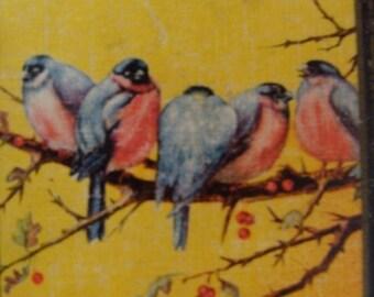 Gorgeous Vintage Antique Birds Card Lot