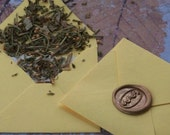 MENTAL FOCUS Spirit of Magic™ Herb Loaded Envelope Spell by Witchcrafts Artisan Alchemy®