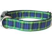 Gordon Tartan Large Dog Collar