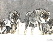 Wolf Art, Pack of Wolves In Snow, Digital Drawing, Southwestern Winter, Native American Totem Animal, Winter ACEO, Home Decor, Giclee Print
