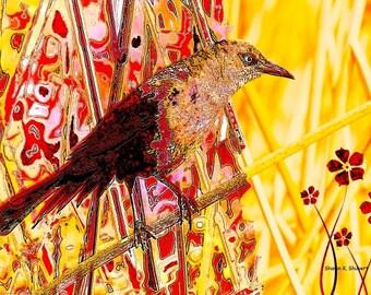 Abstract Bird Art, Textured Woodland Wilderness, Southwestern Red Yellow, Wildlife Wall Hanging, Woodland Animal, 8 x 10, Giclee Print