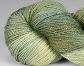 Handpainted Yarn, Merino Silk 50/50, Fingering Wt, Lambent, 100 g, Spring Sapling