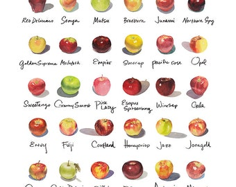 "Framed 12""x12"" Apple-a-Day Compilation Watercolor Print"