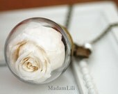 Real Dried Rose Necklace Love Forever