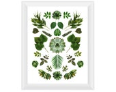 Green Collage 8.5x11. Fine Art Photographic Natural History Print. Minimalist. Natural Home Decor. Indoor garden botanical.