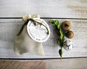Bag of Seed Bombs Garden Gift 10 Seed Balls in Muslin Bag Easy Gardening Birthday Gift under 20