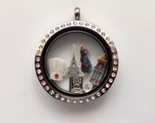 Ratatouille Origami Inspired 30mm Locket with Charms