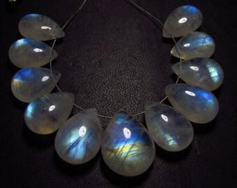 AAA - high grade quality - Amazing Flashy Blue fire Rainbow moonstone Smooth Pear briolett Huge size 10x14.5  - 14x19  mm 11pcs