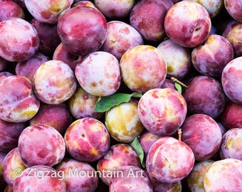Plum art for kitchen.  Fruit wall art or kitchen wall art from food photography.  Fine art print for kitchen decor or wall art.