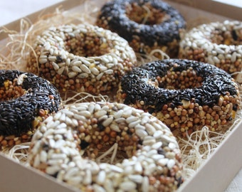 READY TO SHIP- Twitter Friend Tweets- half dozen bird seed donuts- Natural Colors
