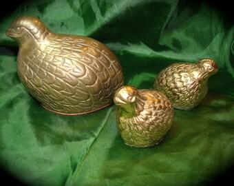 Brass Quail Family.