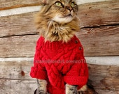 Red Sweater Christmas Card