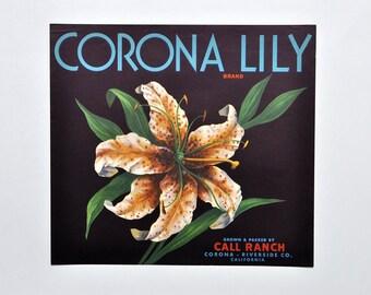 Vintage Original Corona Lily California Orange Fruit Crate Label 1940's