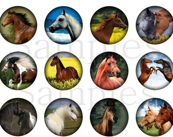 "1"" Inch Noble Horses Flatbacks, Pins or Magnets 12 Ct."