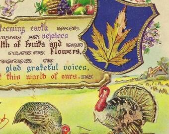 Turkey Pair on Vintage Thanksgiving Postcard Gottschalk Dreyfuss and Davis nice RPO cancel Bridgeburg & Goderich RPO Oct 1915