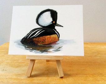 Hooded Merganser Art Print, Hooded Duck Illustration, Digital Bird Drawing, Animal Wildlife Postcard  HM1