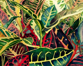 CROTONS- Giclee of Watercolor