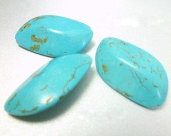 Magnesite Blue Turquoise Large Leaf Semiprecious Stone Jewelry Beads (3)