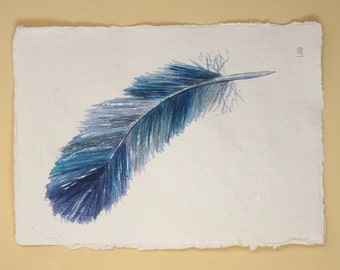 Original blue feather watercolour painting illustration picture