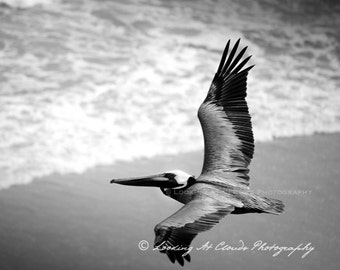 nature photo, beach art, pelican, black and white photo, bird in flight over the ocean, nature photography