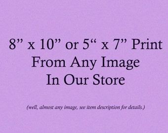 Vintage Image Print - 8 x 10 or 5 x 7 Inches - Choose From Almost Any Image in Our Store