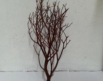 Manzanita Branches Natural Red 14 Inches