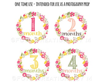 RTS Baby Girl Monthly Bodysuit Stickers, Floral Milestone Collection - Sets of 4 months or All 1-12 Months, Newborn and First 3 weeks