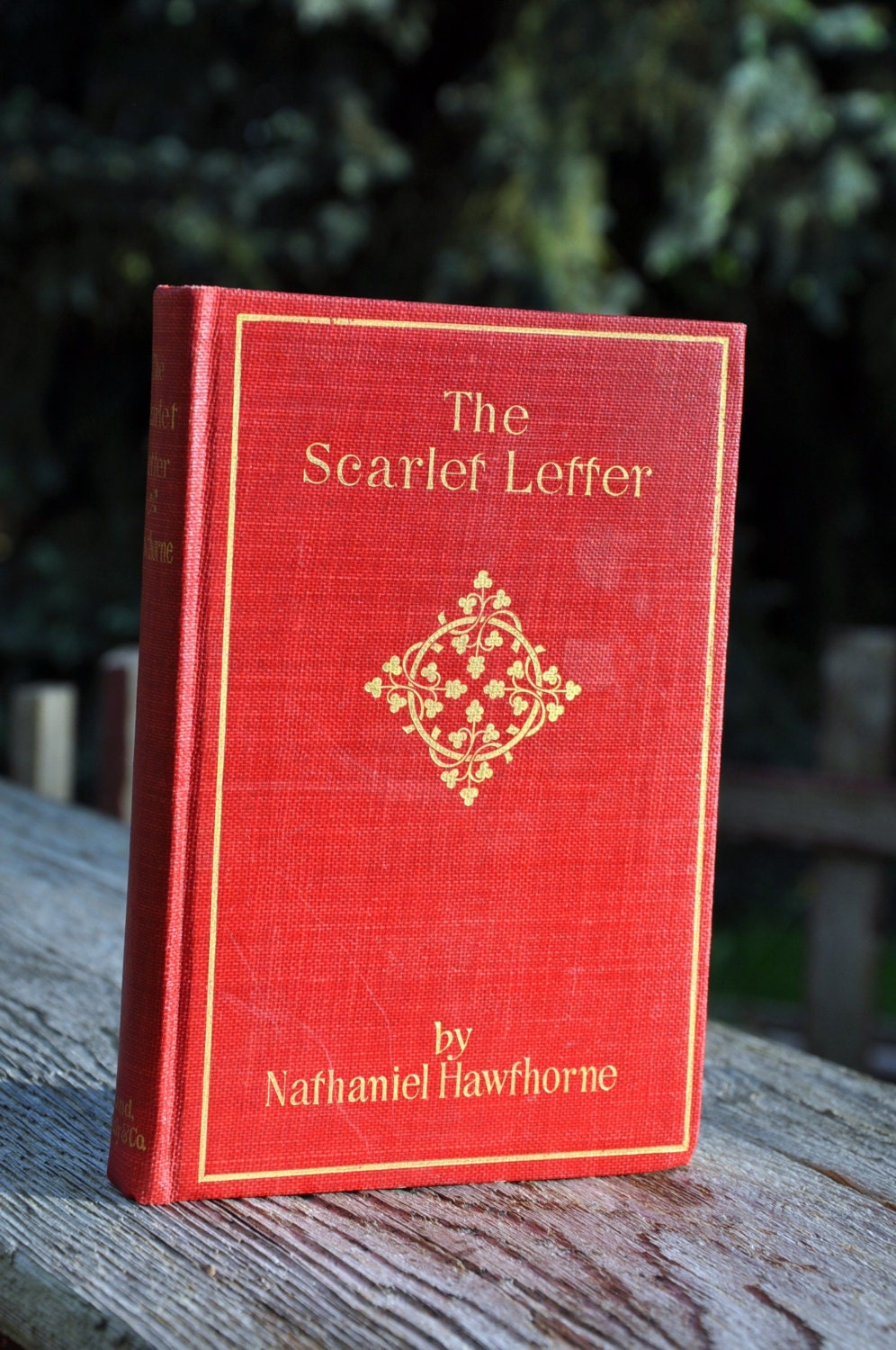 a book review of the scarlet letter First published in 1850, the scarlet letter is nathaniel hawthorne's masterpiece and one of the greatest american novels it's themes of sin, guilt and redemption.