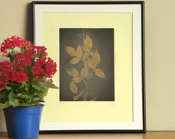 Original Etching Print ROSE GARDEN Floral Mezzotint Printmaking Blossoms Aquatint Fine Art Print Shabby Wall Decor 10x12