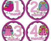 Owl Baby Age Stickers Owl Infant Age Stickers Baby Monthly Stickers Bodysuit Month Stickers, Baby Shower Gift, Baby Milestone Stickers (155)