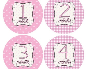 Pink Gingham Baby Girl Stickers, Pink Hearts Baby Stickers, Baby Age Stickers, Infant Stickers, Pink Hearts Nursery Decor (342)