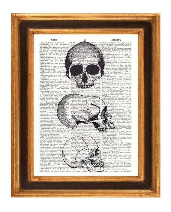 Anatomy, Skull, head skeletons Print vintage illustration Dictionary art prints educational decorative arts Book page Wall art print