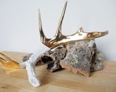 22K Gold Brushed Porcelain Antler