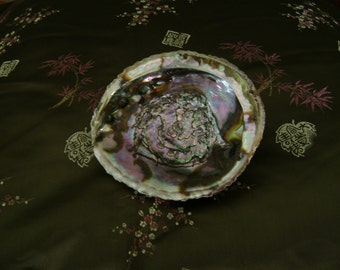Beautiful Abalone Smudging Bowl