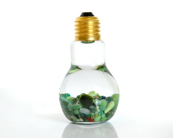 Unique Marimo Moss Ball Light Bulb Aquarium // Holiday Gift Ideas, Special Gift Ideas, Unisex Gift Ideas, Gift for Friends, Gift for Family