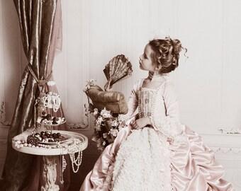 SWANKY PRINTS ORIGINAL 8ft x 8ft Vinyl Photography Backdrop / Boudoir / White Elegant Victorian Wall
