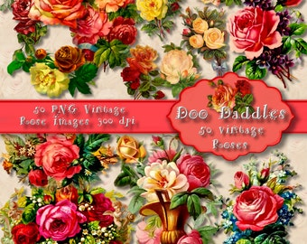 Doodaddle's VINTAGE ROSES,  50 digital png roses, 300 dpi, victorian roses, shabby chic roses, wallpaper roses 587