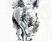"Martinefa's Original watercolor and Ink ""Baby Rhino"""