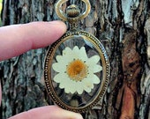 Genuine Dried, Pressed White Daisy Pendant Necklace. Enclosed + Preserved in Resin, choice of necklace chain length. Nature Inspired.