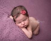 Baby Headband, Burgandy Headband, Newborn Headband-  Burgandy Rose Flower Headband