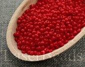 20g Seed beads 8/0 Opaque Red Seed Bead Rocailles NR 273 Opaque seed beads Red seed beads last