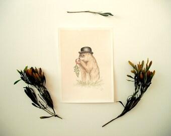 Original Painting: Diggery - illustration, artwork, watercolor, mixed media, woodland, cute, wildlife, animals, nature, ground hog, hat, Mr