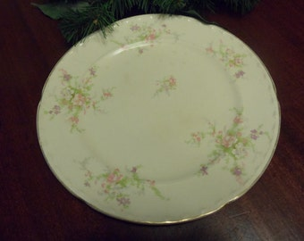 "Crookville China Spring Blossom Dinner Plate  10"" Diameter   (T)"