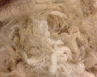 Raw White Alpaca Fleece