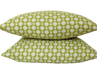 Two Double Sided Chartreuse Betwixt Schumacher Pillow Covers