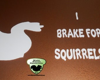 I Brake for Squirrels Window Decal