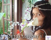 Detox Support 1 - CD and Crystal Healing Necklace to Release Negavity, and 5 Hours of Mixed Intuitive & Therapy Sessions Support with Jelila