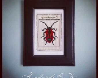 Cross-Stitch Bug: Pyrrhocoris