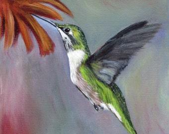 Ruby Throated Hummingbird Bird Art Wildlife SFA  Original Bird acrylic painting by Australian Artist Janet M Graham