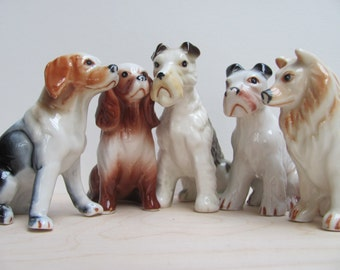 Sale. 5 dogs are searching for a new home